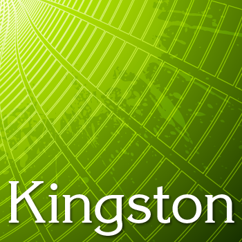 Kingston+Pro
